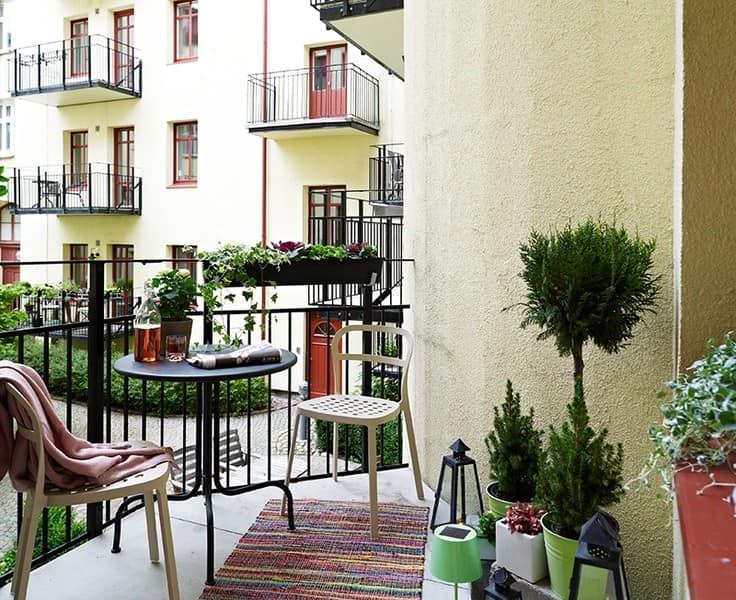 Зеленые растения на балконе фото