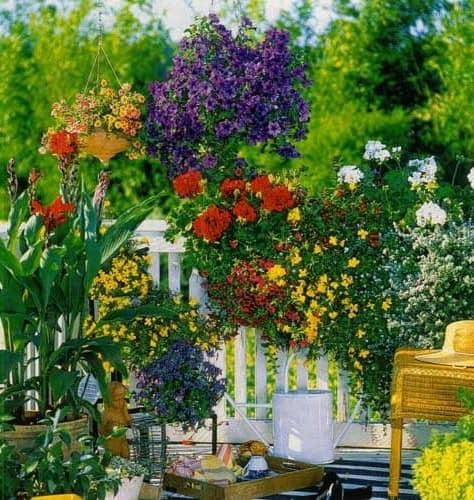 Сад на балконе - летний уголок отдыха