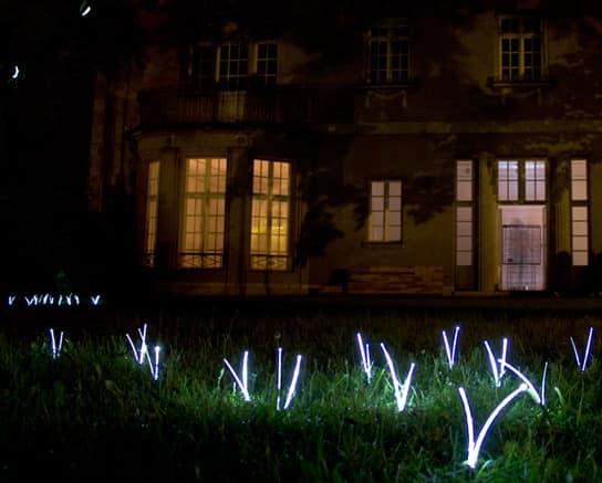 Светильник-трава для сада и дачи фото