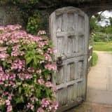 Деревянная калитка-дверь