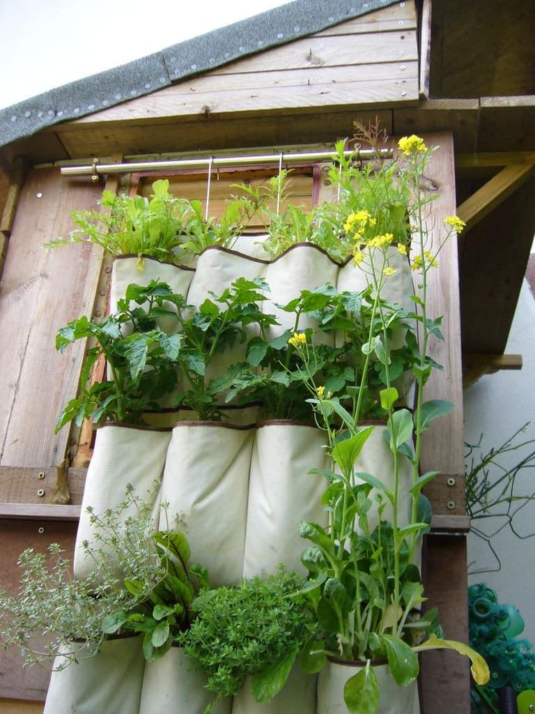Подвесной сад в кармашках на даче - выращиваем зелень