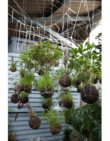 Подвесной сад - произведение искусства