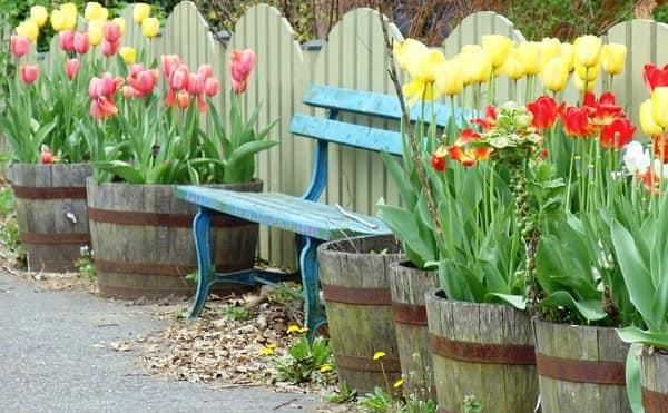 Яркая скамейка в уголке отдыха в саду