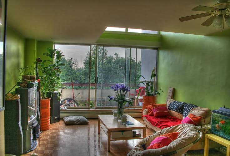 Стильный зеленый интерьер фото