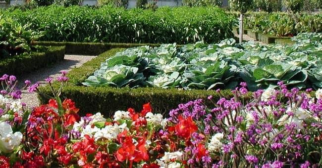 Как сделать декоративный огород своими руками фото