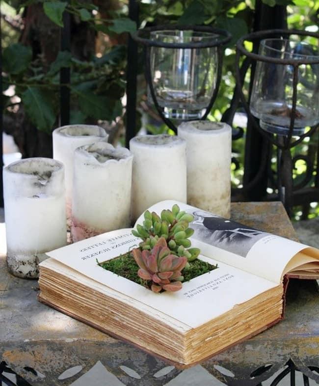 Мини-садик из суккулент в книге своими руками