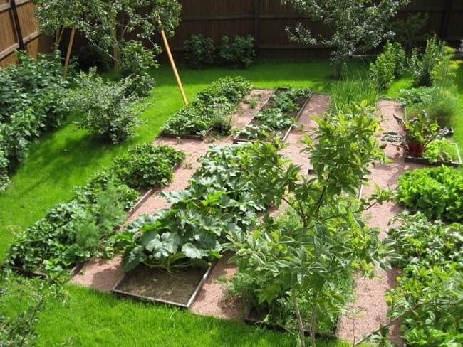 Как сделать грядки для сада своими руками