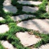 Дорожка из камня и травы
