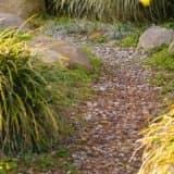 Гравий на садовых дорожках