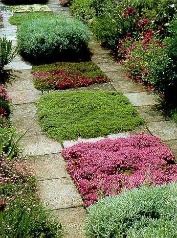 Цветущая комбинированная садовая дорожка из камня