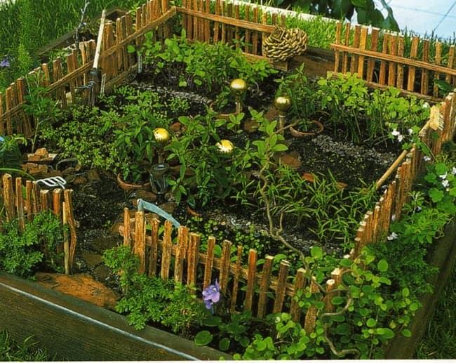 Заборчик и растения декоративного огорода
