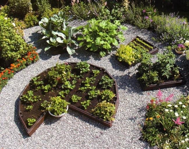 Схема декоративного огорода на фото