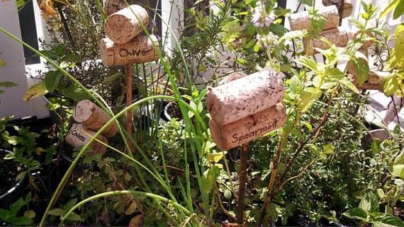 Надписи для растений на огороде из винных пробок