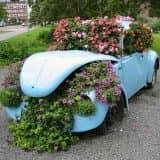 Автомобиль с цветами