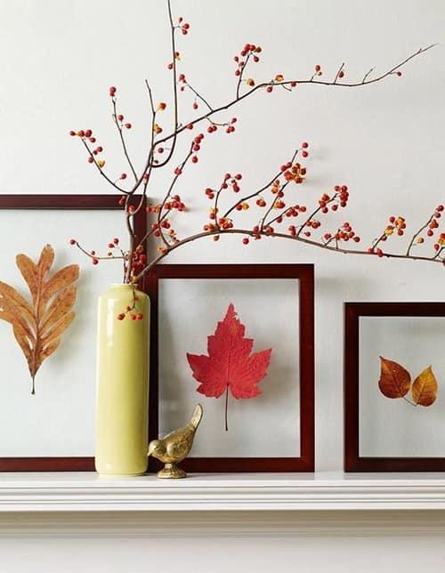 Гербарии и ветка с сухими ягодами для декорированияпомещения
