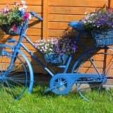 Велосипед-клумба
