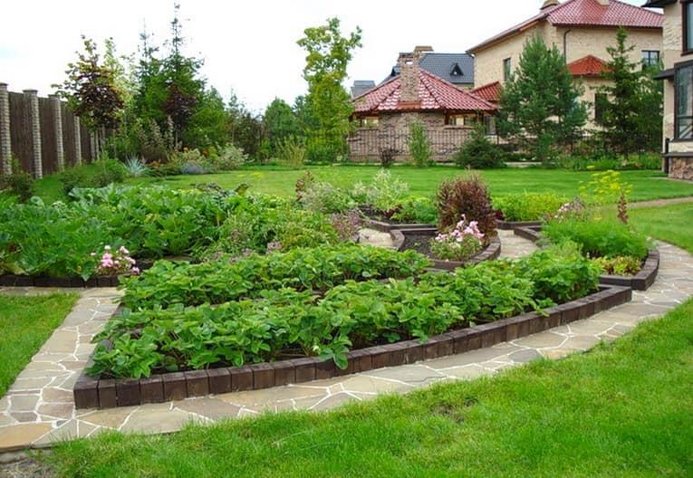 Как выбрать форму грядок для огорода на даче