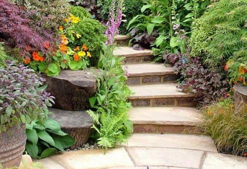 Растения для оформления лестницы в саду