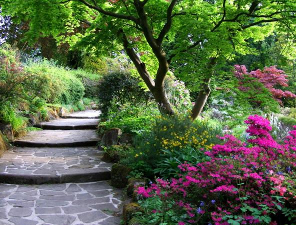 Лестница с широкими ступенями для украшения небольшого склона в саду