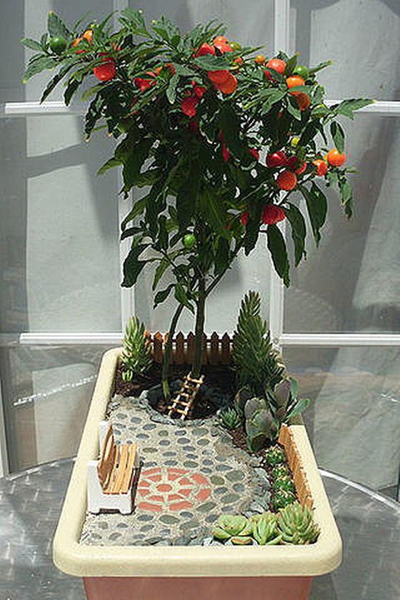 Миниатюрный сад с деревом с плодами