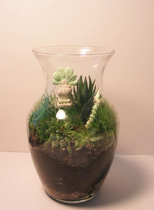 Миниатюрный сад в вазе