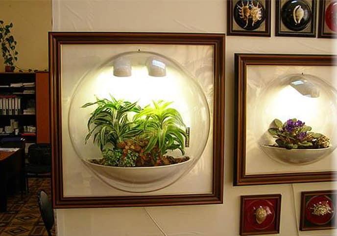 Вертикальный флорариум в плафоне - миниатюрные сады в интерьере