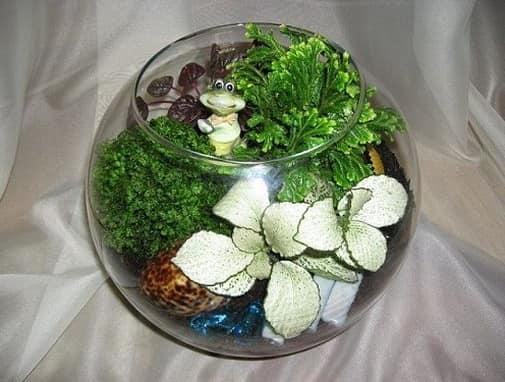 Миниатюрный сад - открытый флорариум