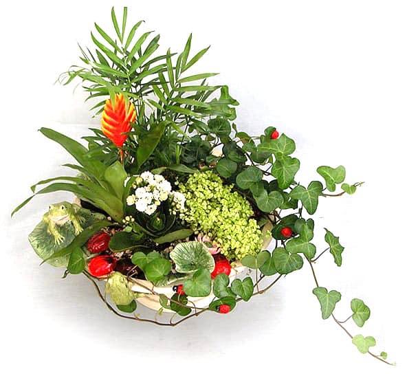 Необычные сочетания цвкта и красоты в интерьере квартиры можно получить используя пот-э-флер