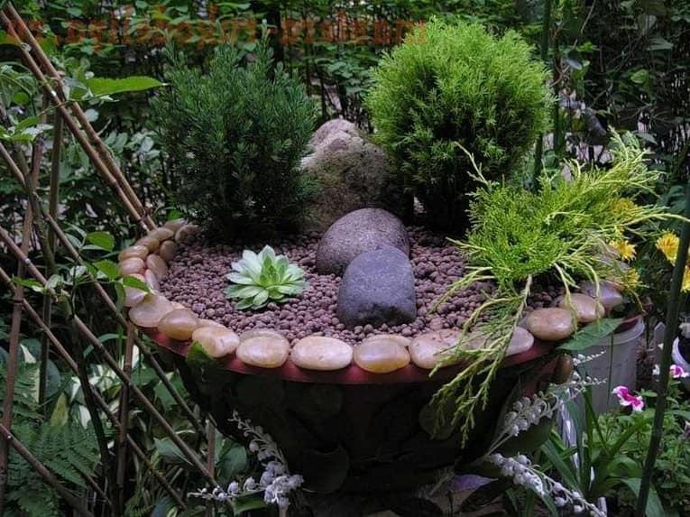 Миниатюрный альпинарий в чаще для вашего сада