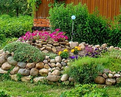 Выбор растений, которые можно посадить на альпийской горке