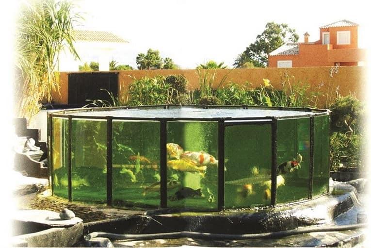 Большой садовый аквариум с рыбками