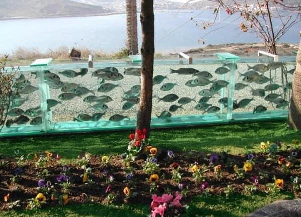 Рыбки на виду: делаем садовый аквариум