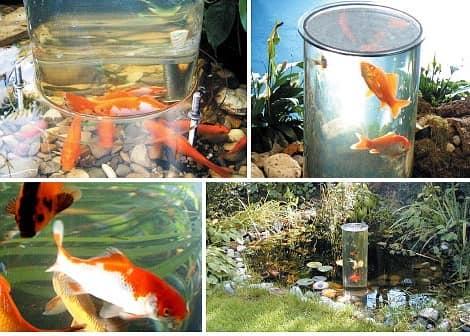 Садовый аквариум лифт фото