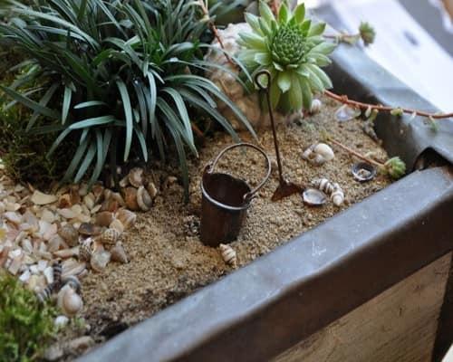 Аренарий в миниатюре: выбор растений