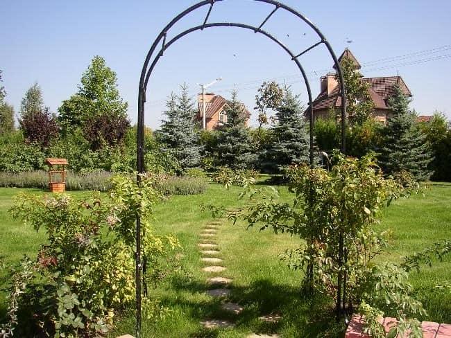 Тонкая пластмассовая садовая арка фото
