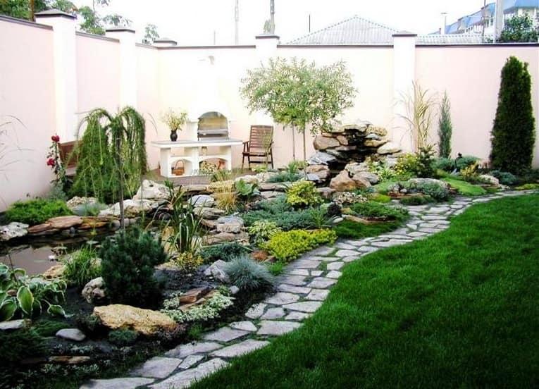 Хвойные растения в ландшафтном