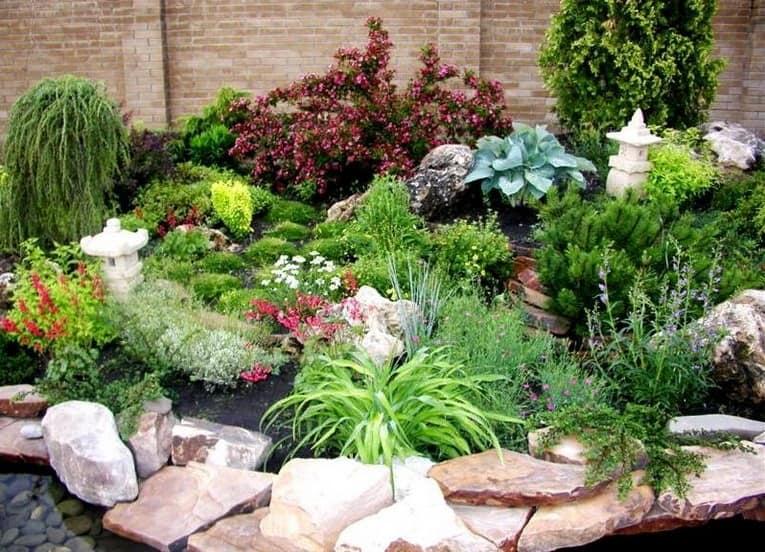 Альпинарий с хвойными растениями в ландшафтном дизайне фото