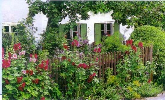 Забор, поросший цветами - кантри стиль сада