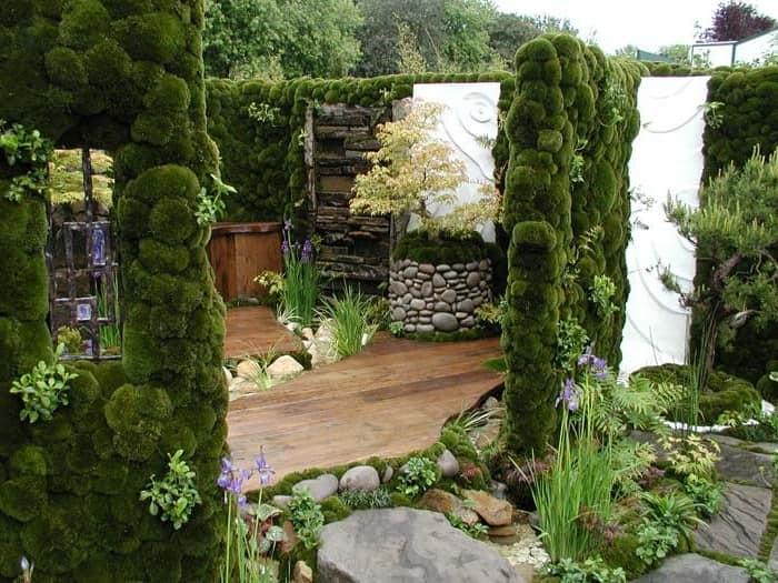 Планировка садового участка своими руками фото 879