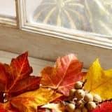 Осенние листья на подоконнике