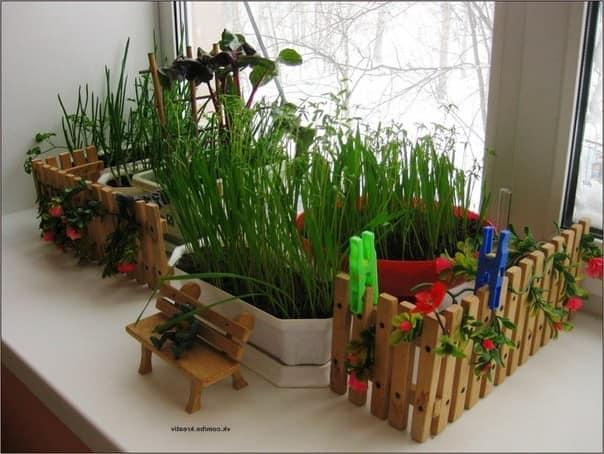 Миниатюрный огород на подоконнике
