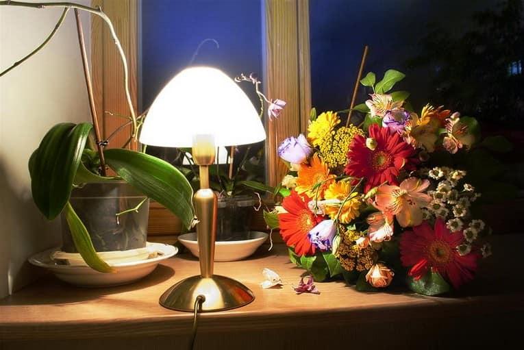 Простой декор окна и подоконника: торшер и цветы