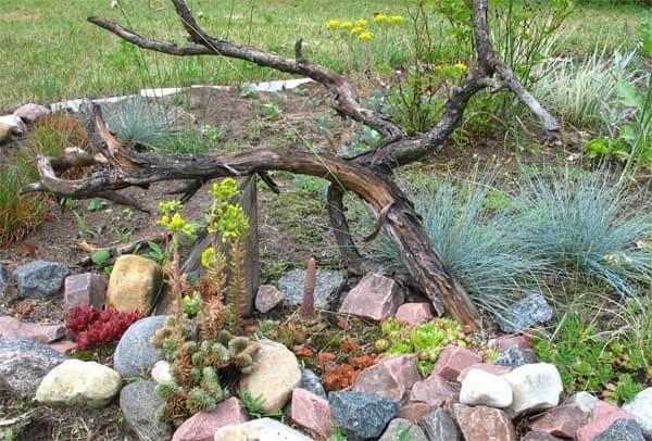 Рутарий - используем коряги и корни для украшения сада фото