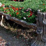 Цветник с корнями