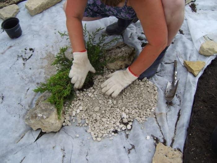 Насыпаем гравий и сажаем растения на дно сухого ручья фото