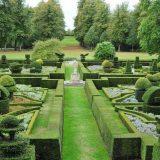 Сад с топиариями