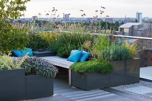 Цветы и зеленые растения для украшения уголка отдыха
