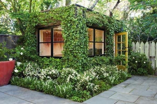 Вертикальное озеленение стен беседки или дачного домика