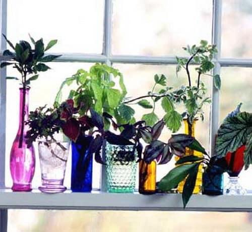 Яркие вазы с цветами для украшения окна и подоконника фото