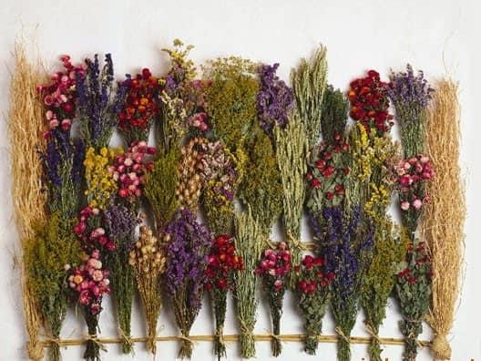 Букеты из сухоцветов можно изготовить самому, а можно купить, благо их имеется великое множество